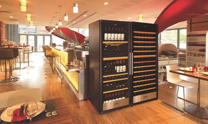 EuroCave Professional. Display, Serve and Cellar your wine. 3000 Series.