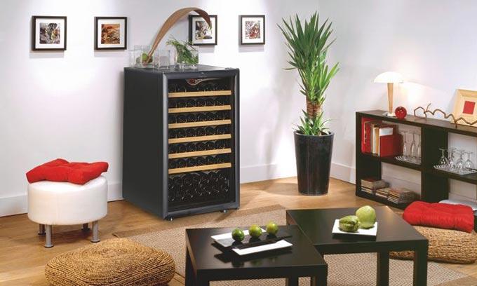 EuroCave Wine Cabinet Premiére Range V101 Home Wine Storage Small